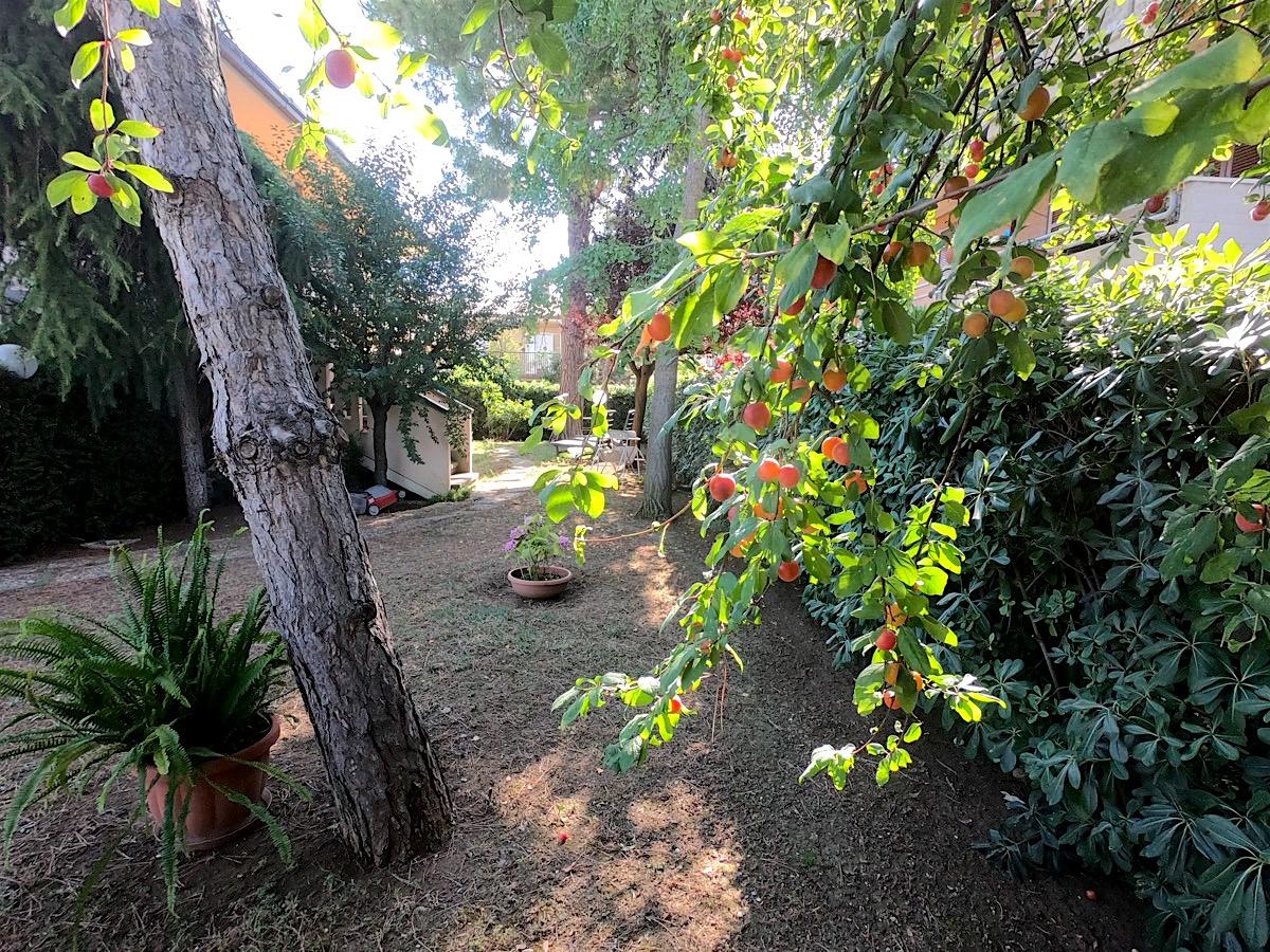 bnb-giardino-prugne