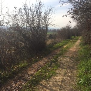 contrada-san-claudio-corridonia-chienti