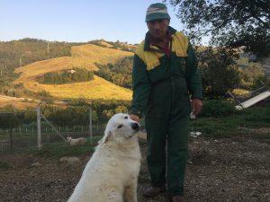 Domenico con uno dei suoi bellissimi cani