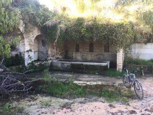 Fonte Magna di Montottone