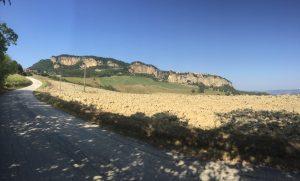 Montefalcone-da-contrada marulla