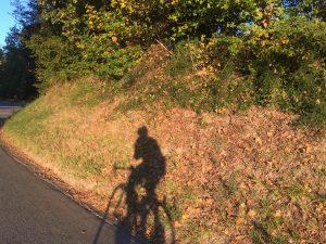 ombra mattino
