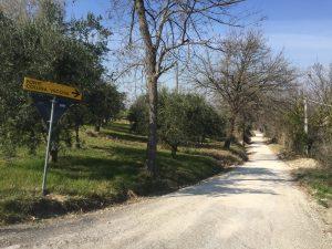 strada collina vecchia