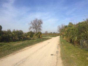 strada-santa-croce-chienti