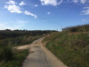 strada verso case verdecchia